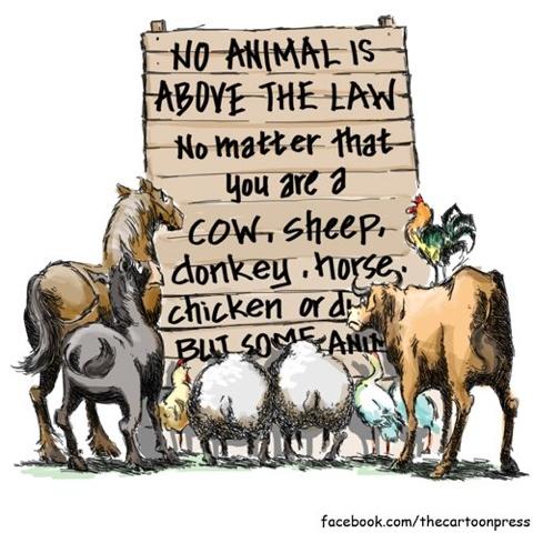 Animal farm boxer essay